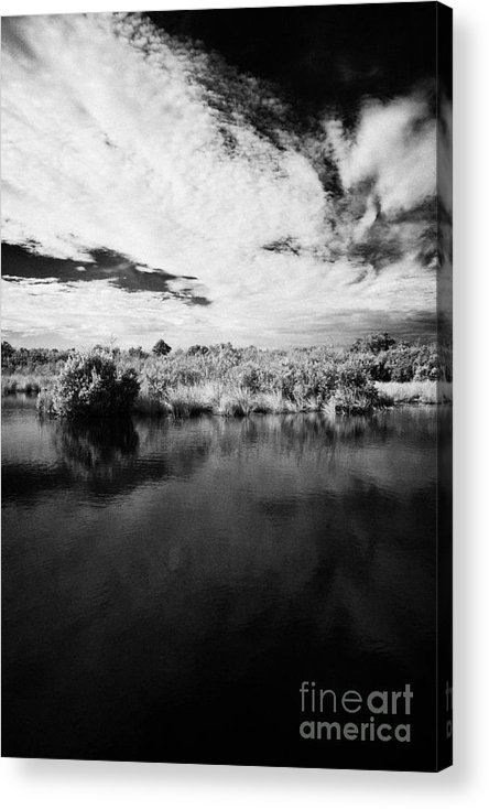 Florida Acrylic Print featuring the photograph Flooded Grasslands And Mangrove Forest In The Florida Everglades by Joe Fox