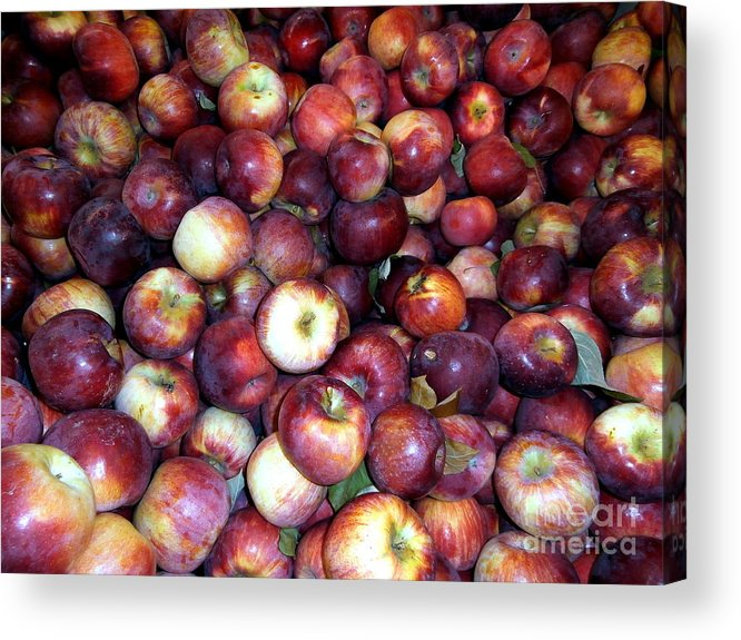 Janine Riley Acrylic Print featuring the photograph Apples by Janine Riley