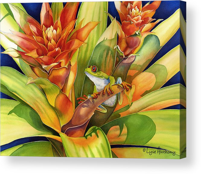Frog Acrylic Print featuring the painting Bright Stars by Lyse Anthony