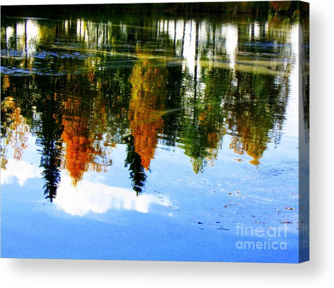 Autumn Canvas Prints Acrylic Print featuring the photograph Fall Colors by Pauli Hyvonen