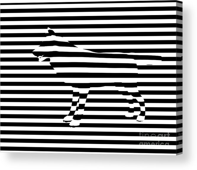 Abstract Acrylic Print featuring the painting Wolf Optical Illusion by Pixel Chimp