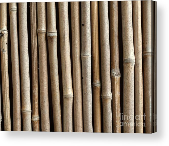 Bamboo Acrylic Print featuring the photograph Bamboo Fence by Yali Shi