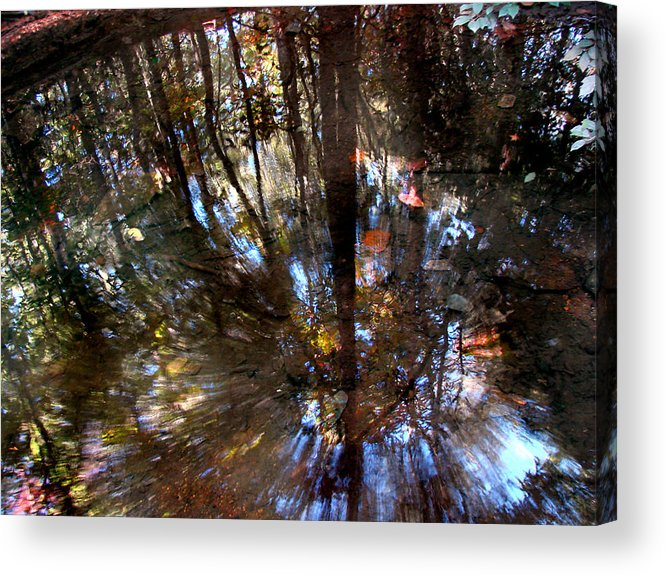 Pond Acrylic Print featuring the photograph Anomaly by Tammy Cantrell