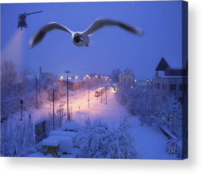 Seagull Acrylic Print featuring the digital art Seagull At Winter by Nafets Nuarb