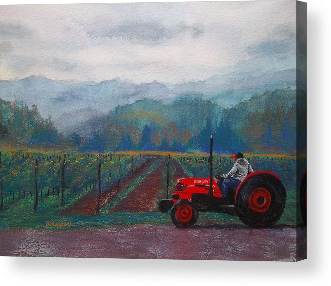 Vineyard Acrylic Print featuring the painting Working The Vineyard by Becky Chappell