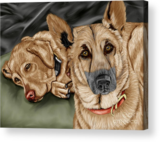 German Shepherd Acrylic Print featuring the painting Dogs by Karen Sheltrown