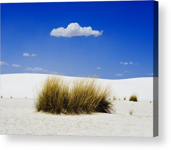 First Contact Acrylic Print featuring the photograph First Contact by Skip Hunt