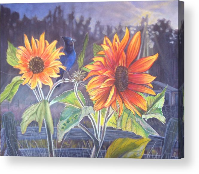 Stellar Jay Acrylic Print featuring the painting Stellar Sunflower by Rayna DeHoog