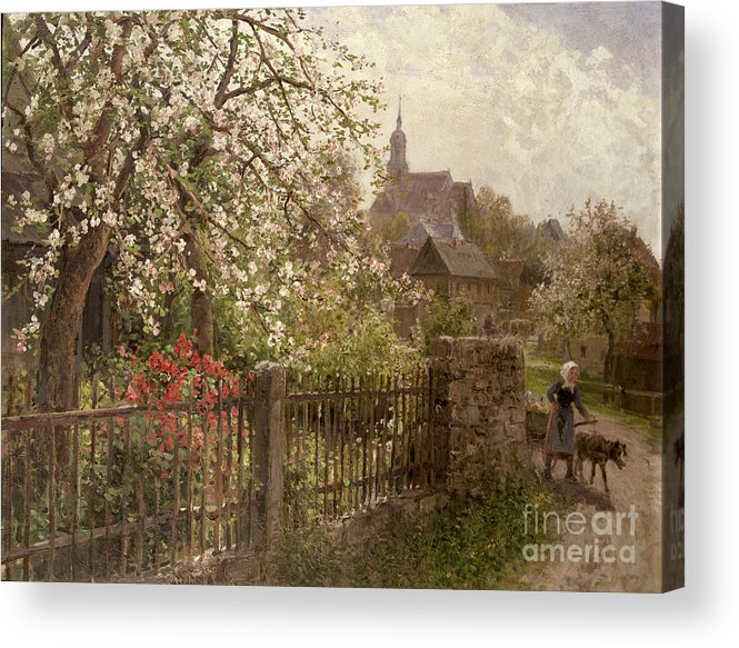 Apple Acrylic Print featuring the painting Apple Blossom by Alfred Muhlig