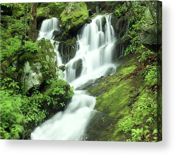 Waterfalls Acrylic Print featuring the photograph Mountain Falls by Marty Koch