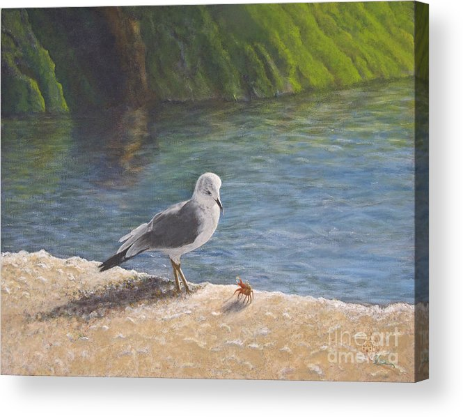 Sea Gull Acrylic Print featuring the painting Back Off by Cindy Lee Longhini
