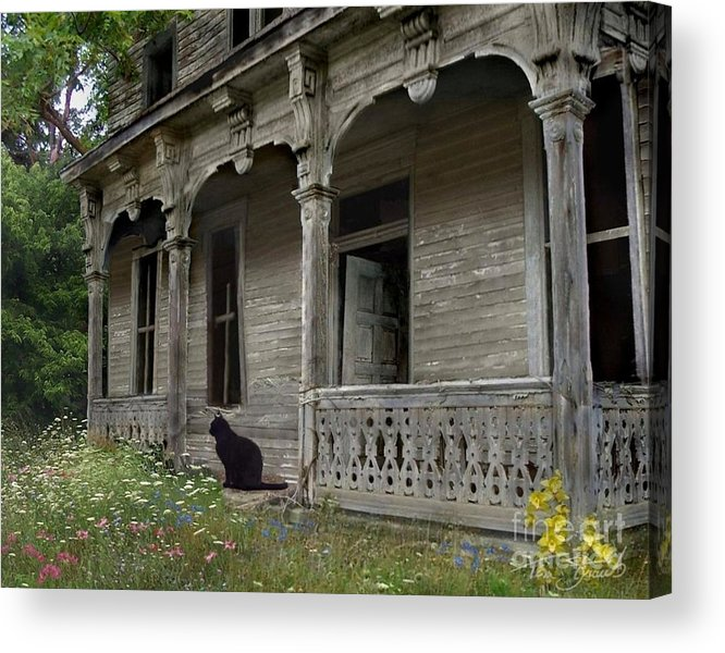 Rotting Acrylic Print featuring the photograph Cat House 1 by Tom Straub