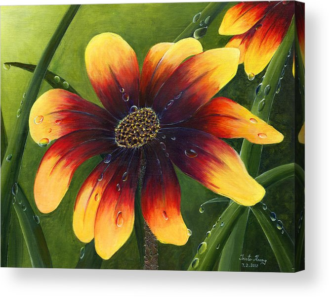 Flower Acrylic Print featuring the painting Blanket Flower by Trister Hosang