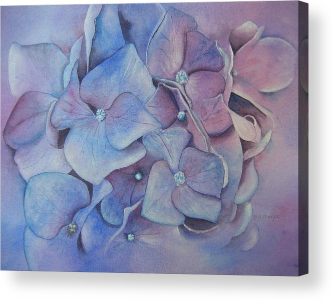 Close Focus Floral Acrylic Print featuring the painting Petals by Patsy Sharpe