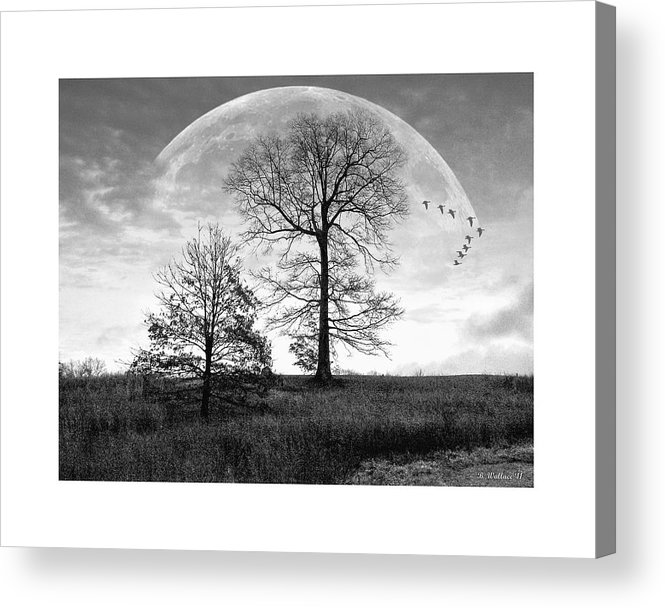 2d Acrylic Print featuring the photograph Moonlit Silhouette by Brian Wallace