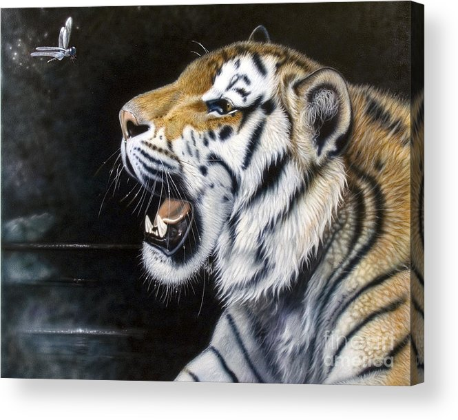 Tiger Acrylic Print featuring the painting Dragonfly by Sandi Baker