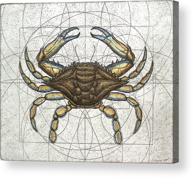 Maryland Acrylic Print featuring the painting Blue Crab by Charles Harden