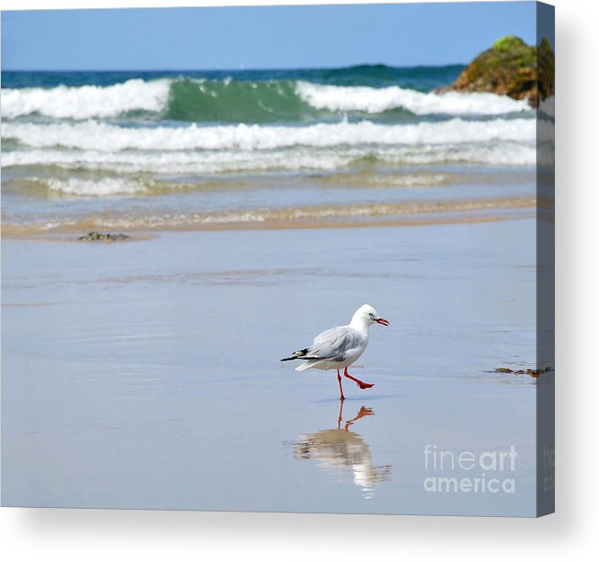 Photography Acrylic Print featuring the photograph Dancing On The Beach by Kaye Menner