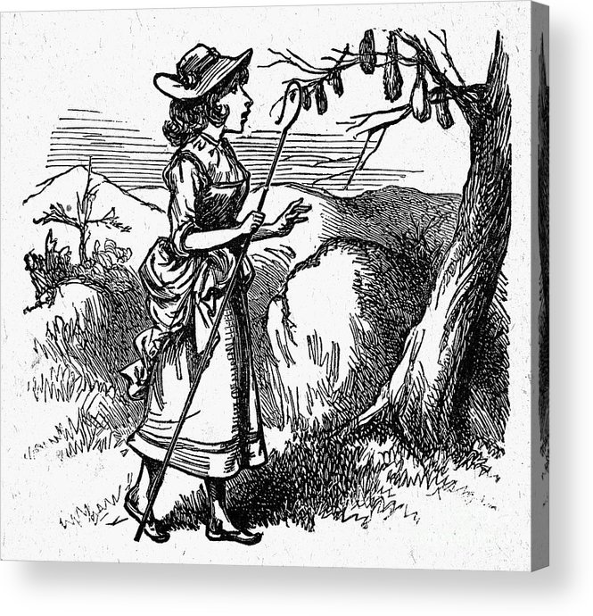 19th Century Acrylic Print featuring the photograph Mother Goose: Bo-peep by Granger