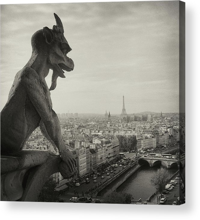 Horizontal Acrylic Print featuring the photograph Gargoyle Of Notre Dame by Zeb Andrews
