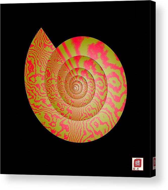 Conch Acrylic Print featuring the photograph Math Conch by GuoJun Pan
