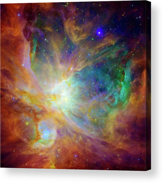 Universe Acrylic Print featuring the photograph The Hatchery by The Vault - Jennifer Rondinelli Reilly