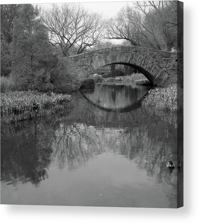 Square Acrylic Print featuring the photograph Gapstow Bridge - Central Park - New York City by Holden Richards