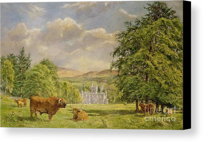 Landscape; Highland Cattle; Angus; Cow; Royal Residence;scottish Baronial; Horn; Horns Park; Bulls; Bull; Balmoral Castle; Balmoral; Hill; Hills; Tree; Trees; Grass; Green; Scottish Canvas Print featuring the painting Bulls At Balmoral by Tim Scott Bolton