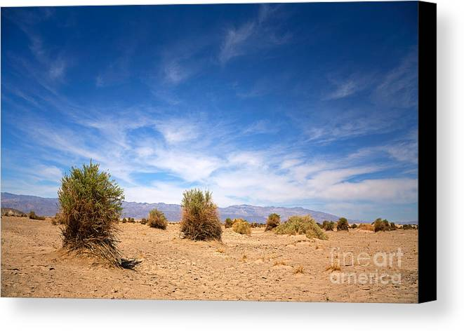 Valley Canvas Print featuring the photograph The Devil's Cornfield by Jane Rix