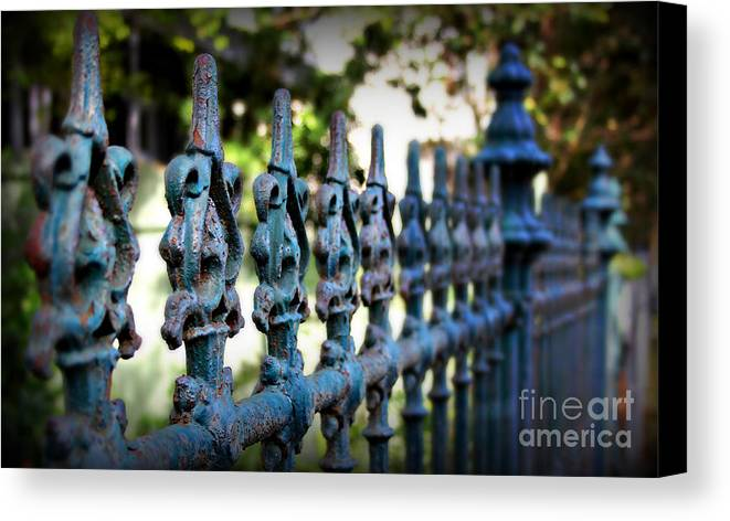 Fence Canvas Print featuring the photograph Iron Fence by Perry Webster