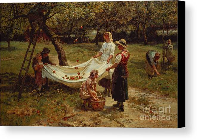 The Canvas Print featuring the painting The Apple Gatherers by Frederick Morgan