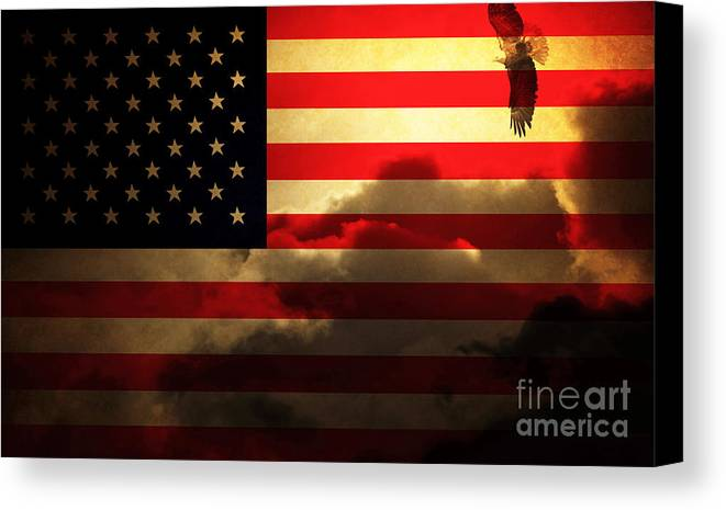 Usa Canvas Print featuring the photograph United States Of America . Land Of The Free by Wingsdomain Art and Photography