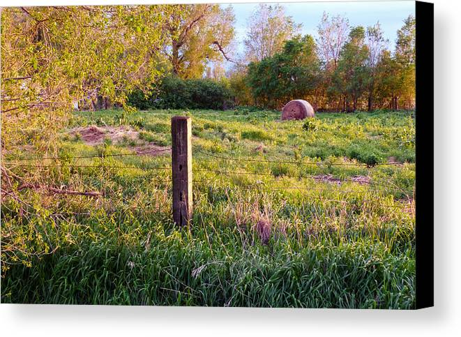 Spring Canvas Print featuring the photograph Post And Haybale by Tracy Salava