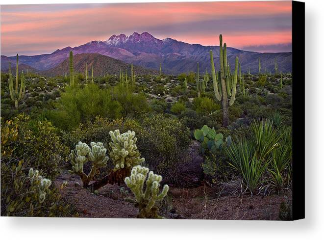 Arizona Canvas Print featuring the photograph Four Peaks Sunset by Dave Dilli