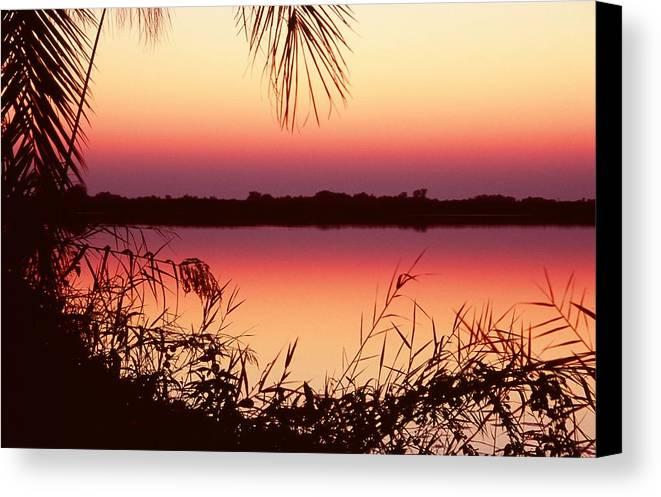 River Canvas Print featuring the photograph Sunrise On The Okavango Delta by Stefan Carpenter