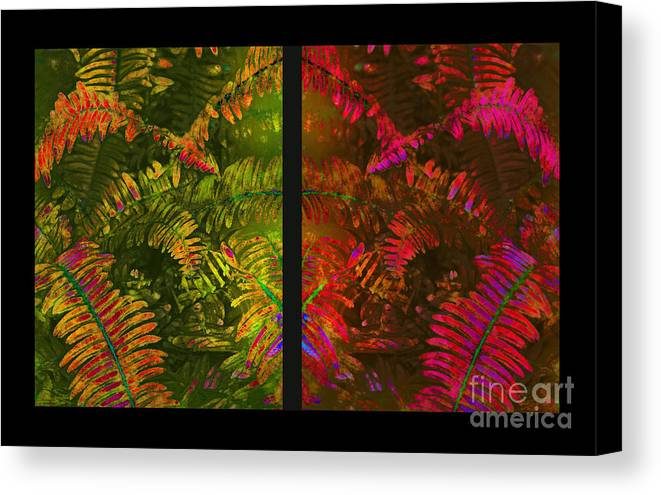Christmas Canvas Print featuring the photograph Christmas Fern Diptych by Judi Bagwell