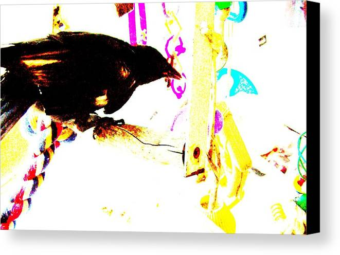 Crow Canvas Print featuring the mixed media Curious Crow by YoMamaBird Rhonda