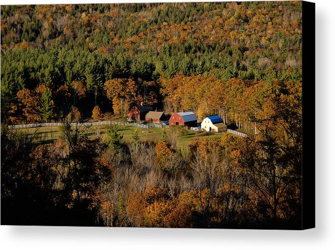 Maine Canvas Print featuring the photograph Maine Fall Colors by Gary Cloud