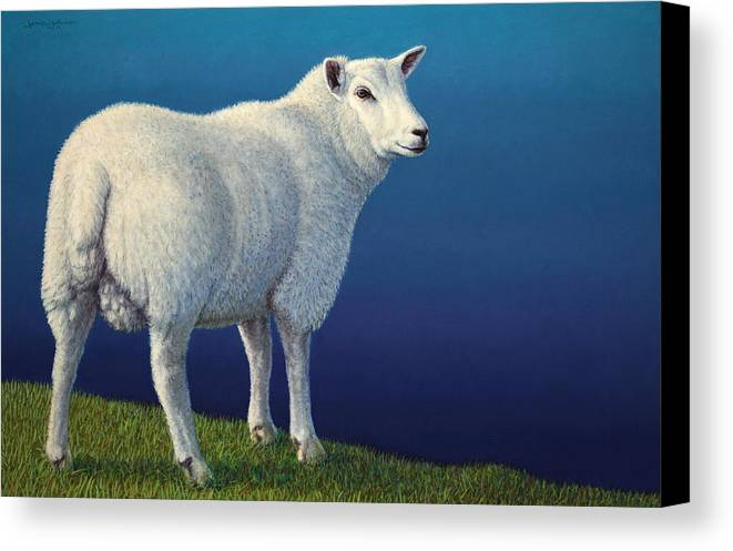 Sheep Canvas Print featuring the painting Sheep At The Edge by James W Johnson
