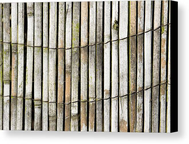 Abstract Canvas Print featuring the photograph Wood Background by Tom Gowanlock