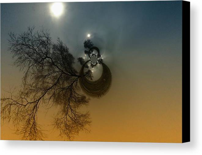 Abstract Canvas Print featuring the photograph A Tree In The Sky by Jeff Swan
