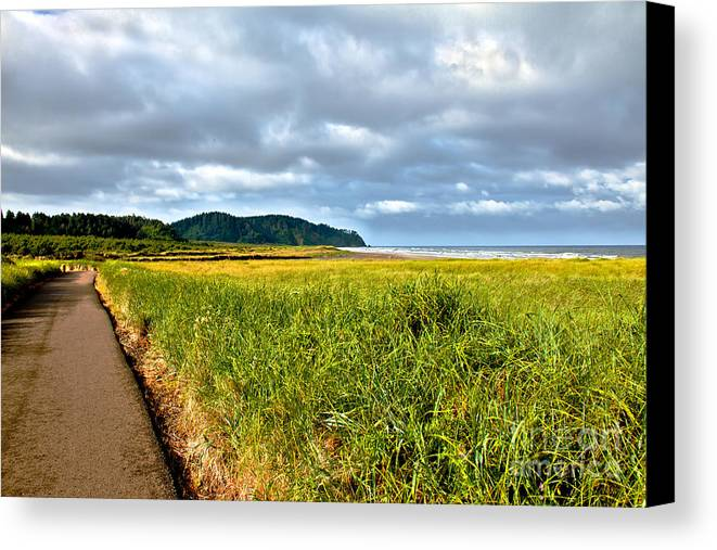 Pacific Ocean Canvas Print featuring the photograph A View From Discovery Trail by Robert Bales