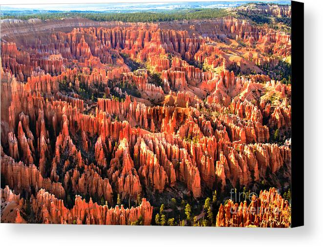 Bryce Canyon Canvas Print featuring the photograph Afternoon Hoodoos by Robert Bales