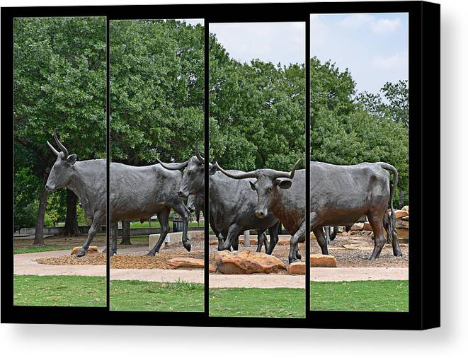 Waco Canvas Print featuring the photograph Bull Market Quadriptych by Christine Till