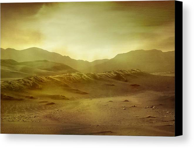 Brett Canvas Print featuring the digital art Desert by Brett Pfister