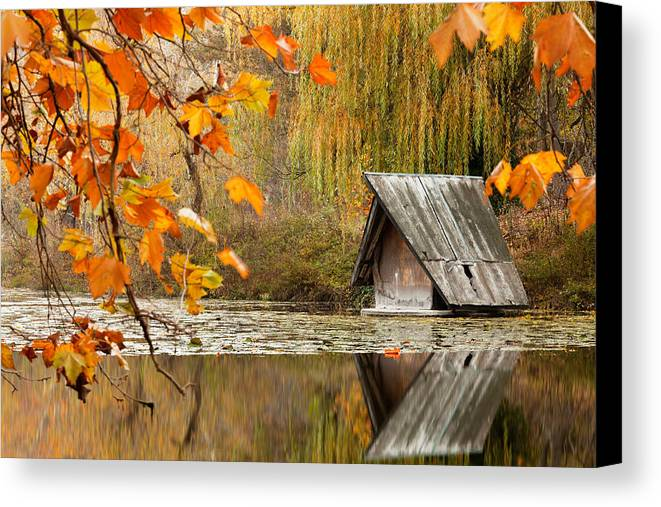 Dawn Canvas Print featuring the photograph Duck's House by Evgeni Dinev