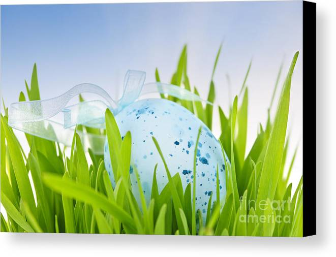 Easter Canvas Print featuring the photograph Easter Egg In Grass by Elena Elisseeva