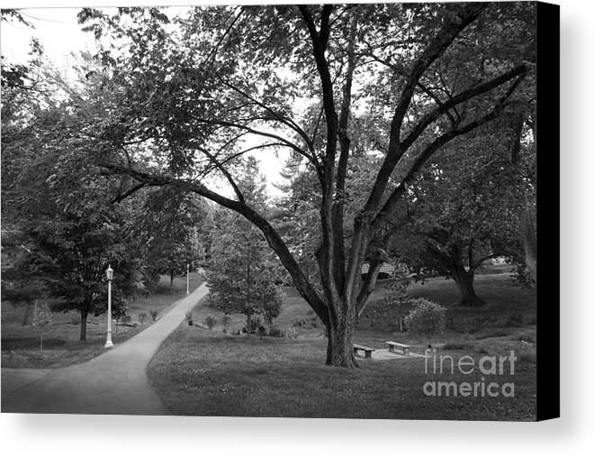 Colonels Canvas Print featuring the photograph Eastern Kentucky University The Ravine by University Icons