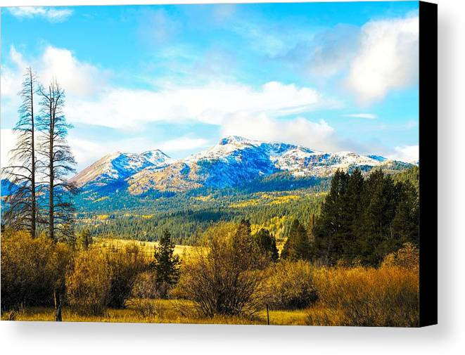 Autumn Canvas Print featuring the photograph Fall Season In The Sierras by Don Bendickson