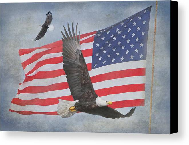 Freedom Canvas Print featuring the photograph Freedom Flight by Angie Vogel